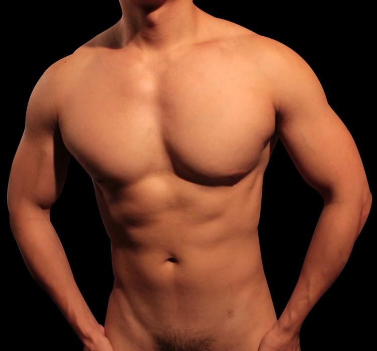 torso.jpg